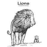 Lions Coloring Book for Grown-Ups 1