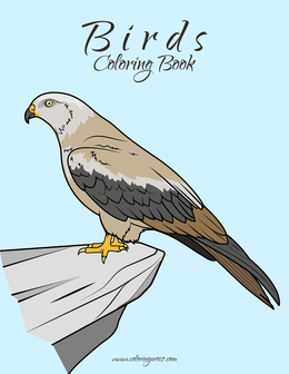 Birds Kids Coloring Book 1