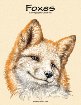 Foxes Coloring Book for Grown-Ups 1