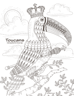 Toucans Coloring Book for Grown-Ups 1