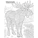 Mammals Coloring Book for Grown-Ups 2